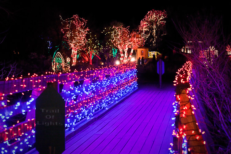trailOfLights_01