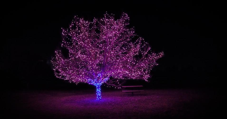 tree_lights_purple_01